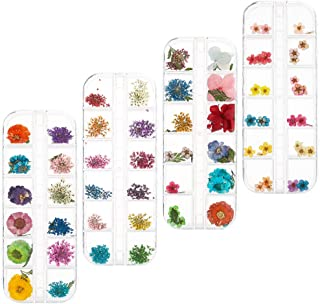 DaveandAthena 144 Pieces Nail Dried Flowers Natural Art Real Dried Flowers Set Nail Applique 3D Nail Art Accessory for Nail Decor (Color A)