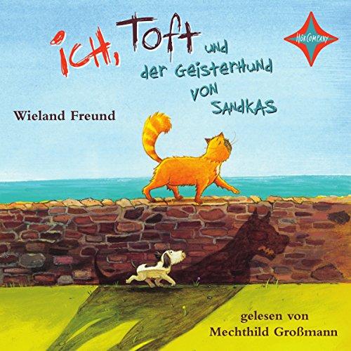 Ich, Toft und der Geisterhund von Sandkas audiobook cover art