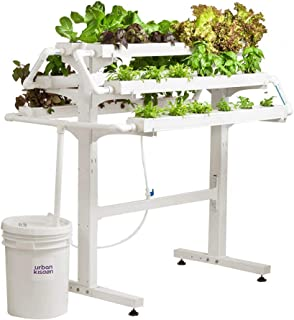 UrbanKisaan Home Kit 36 Plant kit
