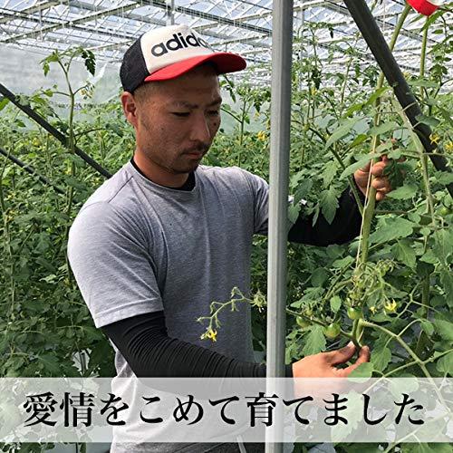 朝ごはん本舗『トマトの宝石箱』