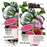 Seed Needs, Watermelon Radish (Raphanus sativus) Twin Pack of 500...