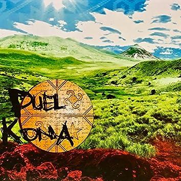 Puel Kona