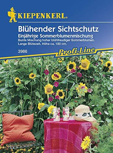 Kiepenkerl Blühender Sichtschutz Einjährige Sommerblumenmischung