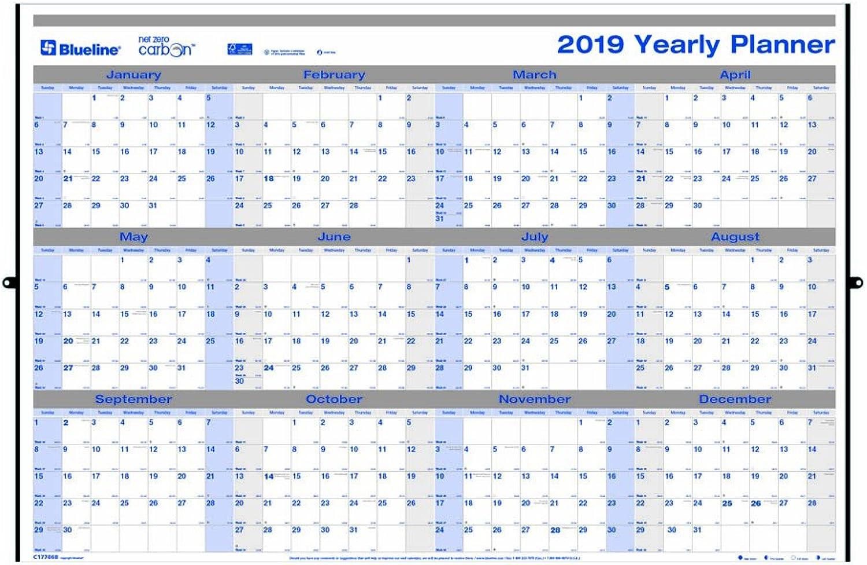 Blauline 2019 Jahresübersicht Horizontal Grünikal Planrecord, laminiert, laminiert, laminiert, Net Zero Carbon, 61 x 91,4 cm (c177868–19) B07DHKVWTF | Sehr gelobt und vom Publikum der Verbraucher geschätzt  c03c3d