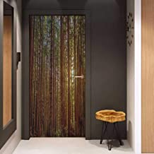 Onefzc Sticker for Door Decoration Forest Redwood Forest in California USA Nature Outdoors Landscape Woods Park Door Mural Free Sticker W17.1 x H78.7 Redwood Green Yellow