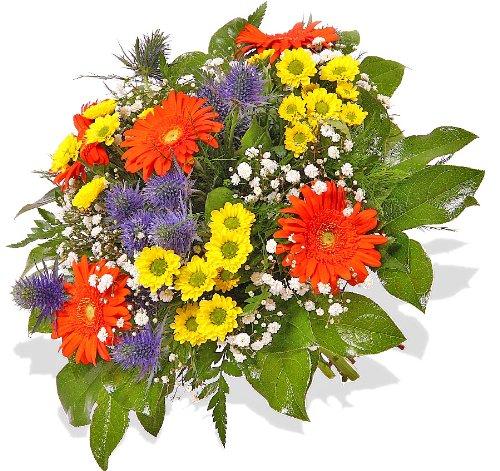 Blumenstrauß BlumenversandDankeschön.! +Gratis Grußkarte+Wunschtermin+Frischhaltemittel+Geschenkverpackung