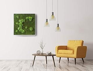 Quadro in flat e ball Moss, Moss Frame, quadro in lichene stabilizzato, quadro vegetale, zero manutenzione