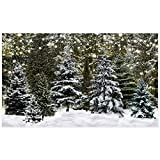 Allenjoy 7x5ft Winter Forest Landscape Photography Backdrop Natural Scenery Glitter Snowflake Pine Trees Background for Christmas Happy New Year Party Decor Banner Portrait Photo Booth Props