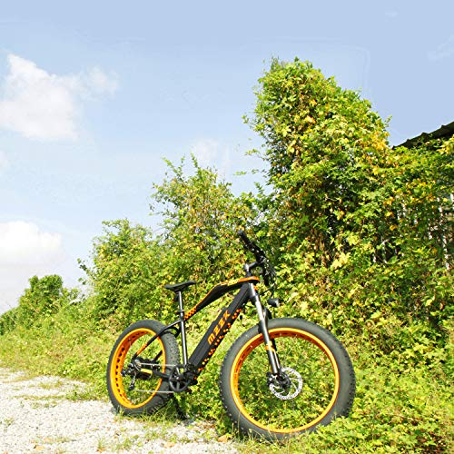 MZZK Electric Bicycle with 500W Brush-Less Geared Motor, 48V 13Ah Li-on Battery and 26 Inch Fat Tires - Falcon (Orange)