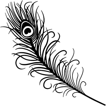 Amazon Com Peacock Feather Outline Silhouette Vinyl Sticker Car Decal 6 White Automotive Use the printable outline for crafts, creating stencils, scrapbooking, and more. peacock feather outline silhouette vinyl sticker car decal 6 white