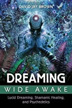 dreaming awake book