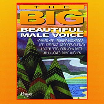 The Big, Beautiful Male Voice