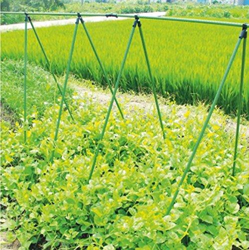 rg-vertrieb Rankhilfe Pflanzstäbe Gartenständer Stellage Rankgerüst Ranknetz Stütznetz für Kletterpflanzen 3 Größen (1,5m Ø 11mm)