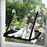 Tempcore Cat Window Perch, Cat Window Perch for Large Cats, Cat hammocks for Indoor Cats, 4 Suction Cups Carry 20 Pound, Breathable Mesh, 360 Degree Sunbathing and Landscape