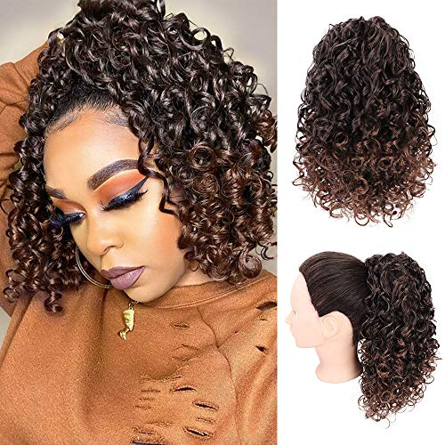 AISI BEAUTY Curly Ponytail Hair Piece High Synthetic Hair with 2 Clips for Women (Mixed Dark Brown)