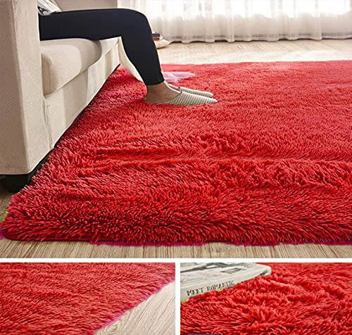 Abaseen Comfort Soft Fluffy Rugs Shaggy Large Rugs For Bedroom Living Room Carpet Study Room Area Rugs Non-Slip Indoor Floor Mat (Red, 60 x 110 cm)