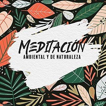Meditación Ambiental y de Naturaleza - Música de Terapia con Sonido Natural, Reflexiones, Concentración Profunda, Serenidad Relajación