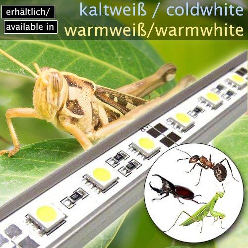 OCS.tec LED-Beleuchtung (kaltweiß, 30cm) Simulator Steuerung Terrarium/Aquaterrarium/Vivarium Reptilien Amphibien Spinne Insekt TB7WW