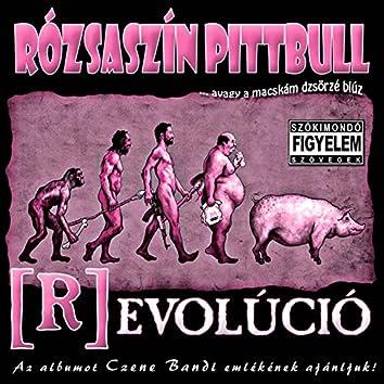(R)evolúció