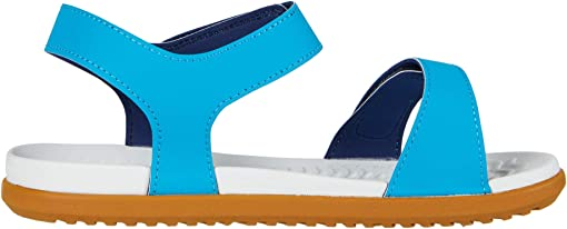 Vibrant Blue/Shell White/Toffee Brown