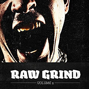 Raw Grind, Vol. 2 (A Selection of Punk, Hardcore & Metal Music)