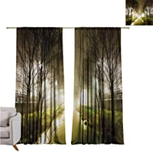 RenteriaDecor Forest,Sliding Door Insulated Curtains Water Channel Foggy Weather Trees Grass City Street at Winter Night Mystery W84 x L84 Fade Resistant Polyester Microfiber
