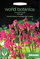 WB 英国ジョンソンズシード Johnsons Seeds world botanics Dodecatheon Red Light ワールド・ボタニクス ドデカセオン・レッド・ライト