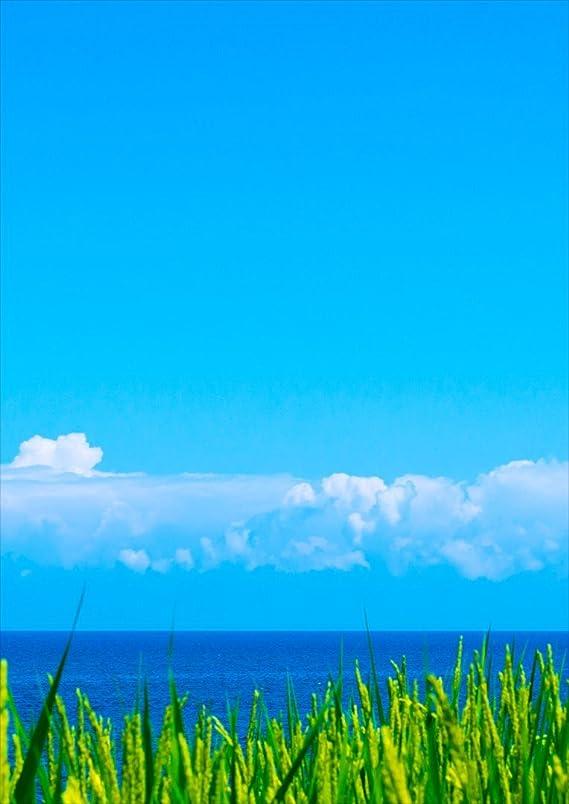 オリエンテーション少しガラガラigsticker ポスター ウォールステッカー シール式ステッカー 飾り 515×728㎜ B2 写真 フォト 壁 インテリア おしゃれ 剥がせる wall sticker poster 009748 風景 空 海 写真