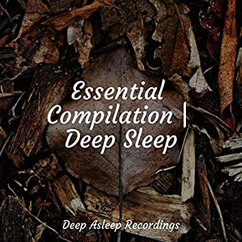 Essential Compilation   Deep Sleep