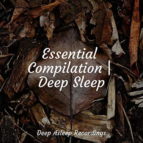 White Noise Sleep Sounds, Massage Tribe & Sleeping Music
