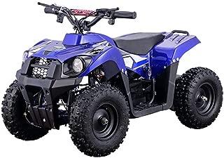 Monster 36v 500w ATV in Blue