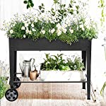 """FOYUEE Raised Planter Box with Legs Outdoor Elevated Garden Bed On Wheels for Vegetables Flower Herb Patio 13 SIZE: 40-1/2"""" L x 15-1/2"""" W x 31-1/2"""" H overall, planting box: 37-1/2"""" L x 15-1/2"""" W x 8"""" deep, holds about 2.5 cubic feet soil, provide ample growing space to raise vegetables, herbs, flowers and plants ERGONOMIC: Elevated raised planter box with legs eliminates the need to bend over, making gardening convenient. Raised garden bed on wheels, move to anywhere you want, with handy shelf holds accessories or tools METAL: Made of stable galvanized steel raised garden bed with anti-rusty grey coating, not made of wood which may rot. It can place outside or indoor for long time use"""