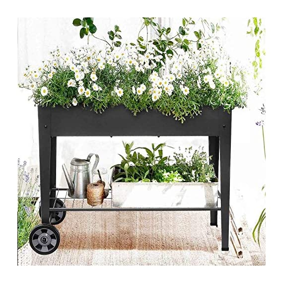 """FOYUEE Raised Planter Box with Legs Outdoor Elevated Garden Bed On Wheels for Vegetables Flower Herb Patio 6 SIZE: 40-1/2"""" L x 15-1/2"""" W x 31-1/2"""" H overall, planting box: 37-1/2"""" L x 15-1/2"""" W x 8"""" deep, holds about 2.5 cubic feet soil, provide ample growing space to raise vegetables, herbs, flowers and plants ERGONOMIC: Elevated raised planter box with legs eliminates the need to bend over, making gardening convenient. Raised garden bed on wheels, move to anywhere you want, with handy shelf holds accessories or tools METAL: Made of stable galvanized steel raised garden bed with anti-rusty grey coating, not made of wood which may rot. It can place outside or indoor for long time use"""