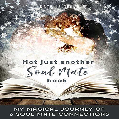 Not Just Another Soul Mate Book cover art
