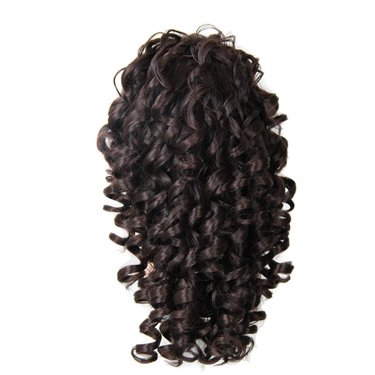 Hair Wig Outdoor,FAPIZI Lace Front Human Hair Wigs Pre Plucked with Baby Hair Curly Brazilian Remy Hair Wig
