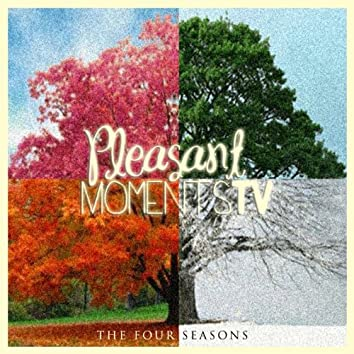 The Four Seasons (1 Hour of the Best Relaxing Music)