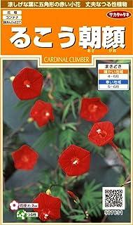 サカタのタネ 実咲花7831 るこう朝顔 00907831