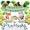 Premium 62PCS Jungle Theme Birthday Party Decorations with Banner, Greenery Garland, Lantern, Pom Poms, Animal Balloons, Cake Toppers, Party Supplies for Boy Girl #2
