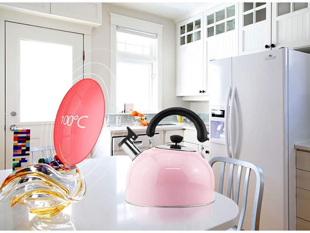 Waterkokers met kookplaat, theepot van roestvrij staal met fluit, theepot met spiegelglans, hitte- en roestbestendigheid, gemakkelijk schoon te maken, maken (kleur: A, maat: 5L) B