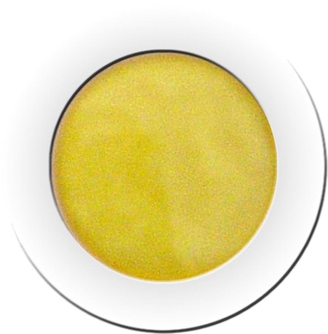 パーツかんがい羨望カラーパウダー 7g ソディウム