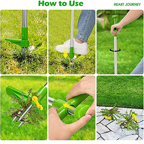 QWEIAS Stand Up Weeder Weed Puller Standing Plant Root Removal Tool Long Handle Garden Weeding Hand Tool with 3 Claws Grandpas Weeder for Dandelion, Stainless Steel High Strength Foot Pedal,Green