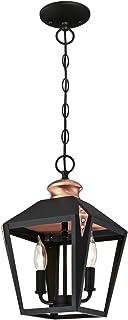 Westinghouse 6328440 Luminaire Suspendu d'Intérieur à deux Lampes, Verre, Noir Mat