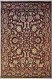 etnico Alfombra de doble nudo Ziegler Chobi de 8'0 x 10'2 hecha con tintes vegetales – 243 cm x 309 cm marrón oscuro diseño simétrico alfombra
