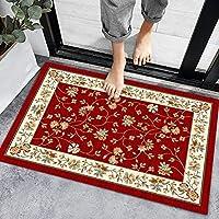 玄関マット 足ふきマット 室内 屋外 家庭用 業務用 滑り止め 泥落とし 洗える 吸水 速乾 -Auburn-Red_40 * 60cm