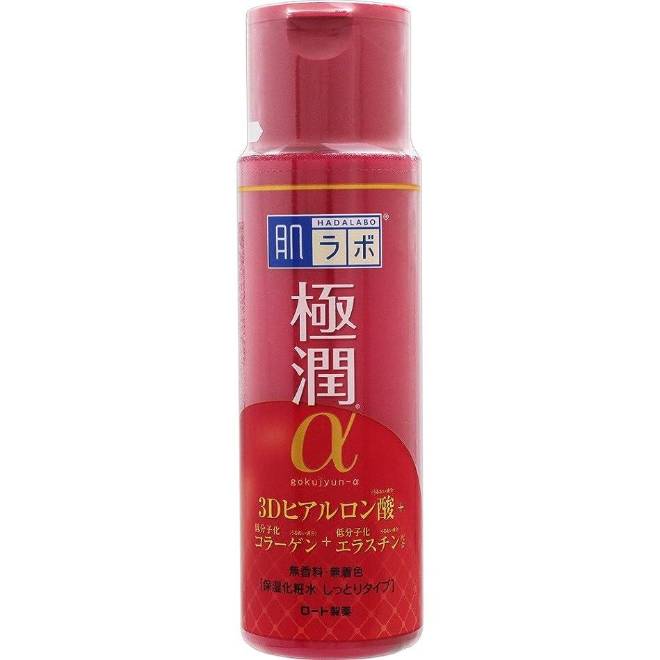 満足必要条件甘やかす肌ラボ 極潤α ハリ化粧水しっとりタイプ 3Dヒアルロン酸×低分子化コラーゲン×低分子化エラスチン配合 170ml