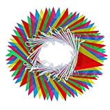 walolo Bunting Banner, 164 Feet Multicolor Nylon Pennant Banners Flag Outside Party Banner 75 Flags for Wedding Birthday Party Garden Brand Opening Home Deco