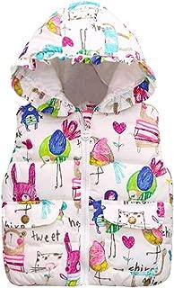 Toddler Baby Girls Winter Windproof Outwear Hooded Gilet Jacket Coat Vest