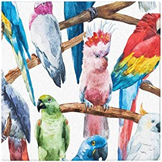 InterestPrint Watercolor Bright Parrot Tropical Bird Cockatoos Canvas Prints Wall Art Stretched and Framed Modern Home Decor, 16 x 16 Inches
