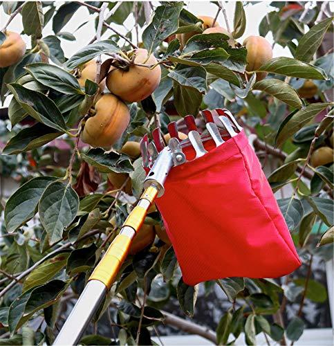 HBRE Cueilleur de Fruits,avec Corbeille et Manche Télescopique 6 Mètres, Légèrement Stable et Peu Encombrante,pour Le Jardinage Cueilleur Pommes, Les Oranges, Les Poires, Les Autres Fruits, Etc,3M