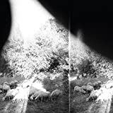 Godspeed You! Black Emperor: Asunder,Sweet and Other Distress (Audio CD)
